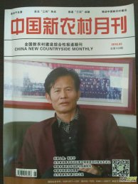 中国新农村月刊杂志 征理论版征稿