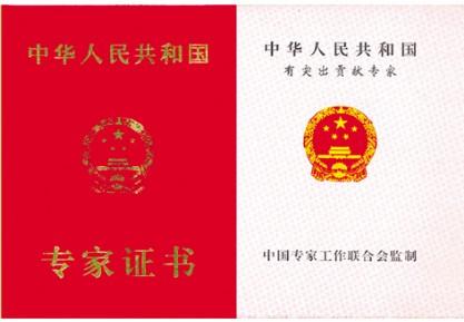 2010年中国十大创新人物――张世麟教授