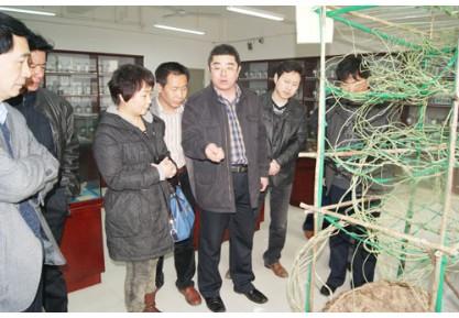 中国现代医学研究院副院长林膑到马同长天然药物标本馆调研